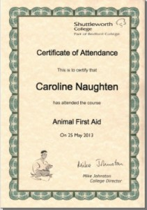 Carolines-Animal-First-Aid-Certificate