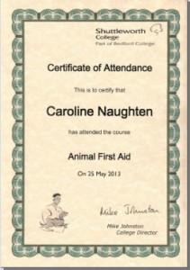 Carolines-Animal-First-Aid-Certificate